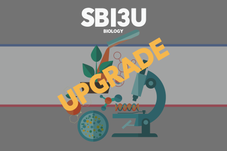 Upgrade SBI3U