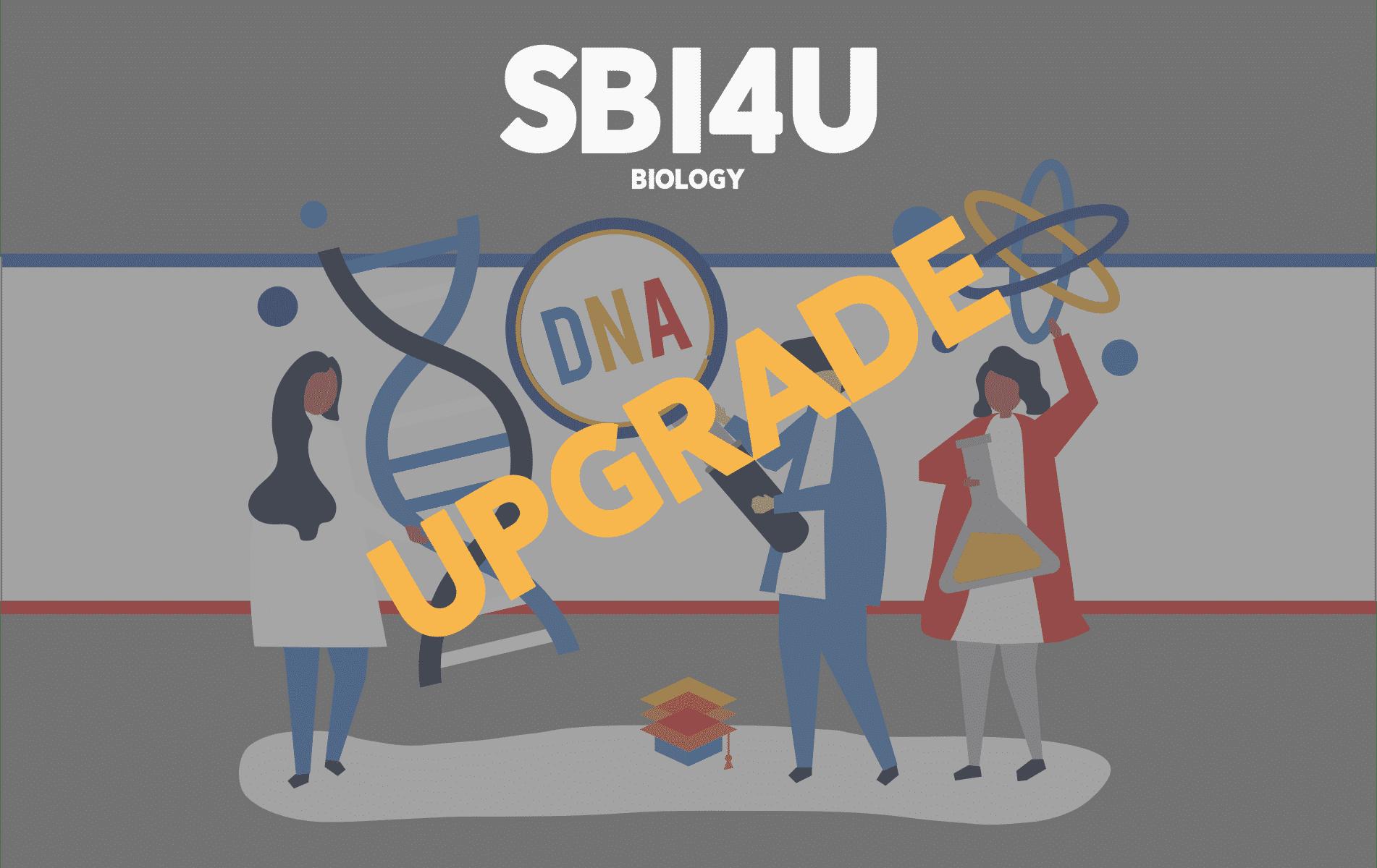 Upgrade SBI4U
