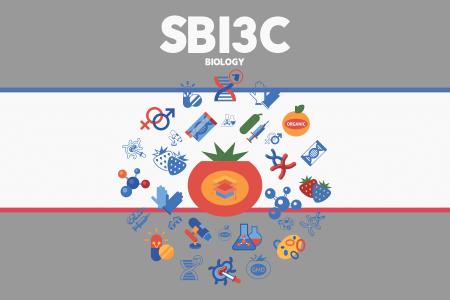 SBI3C